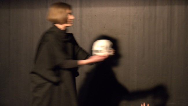 FRANKENSTEINS SCHÖPFUNG nach Mary Shelley (Uraufführung) Galerie 9
